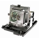 麗訊VIVITEK 5811118154-SVV投影機燈泡 適用D552 / D554 / D555 / D557W...等型號