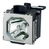 國際牌Panasonic ET-LAE12投影機燈泡 適用PT-EX12K / PT-EX12KE / PT-EX12KU...等機型