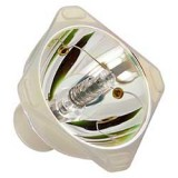 VIEWSONIC優派 RLC025投影機燈泡適用PJ258D